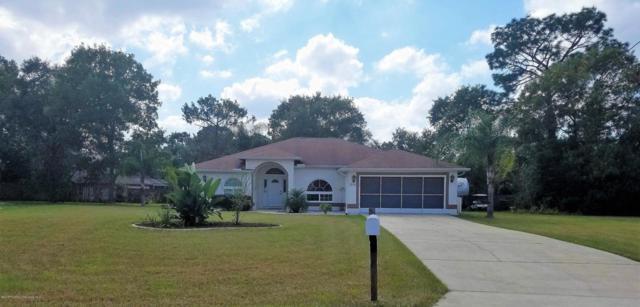11294 Palomar Street, Spring Hill, FL 34609 (MLS #2196695) :: The Hardy Team - RE/MAX Marketing Specialists