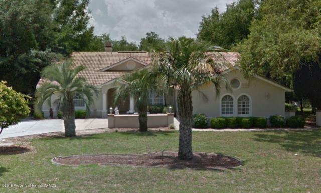 11276 Woodland Waters Boulevard, Weeki Wachee, FL 34613 (MLS #2196794) :: The Hardy Team - RE/MAX Marketing Specialists