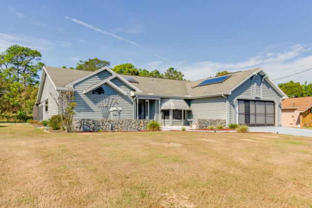 5667 Pillar Avenue, Spring Hill, FL 34608 (MLS #2196848) :: The Hardy Team - RE/MAX Marketing Specialists