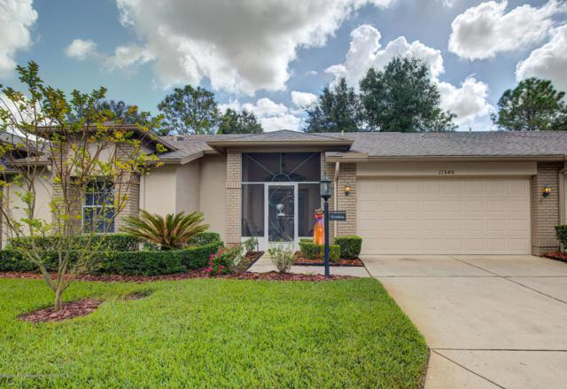 11540 Baronwood Court, Hudson, FL 34667 (MLS #2196853) :: The Hardy Team - RE/MAX Marketing Specialists