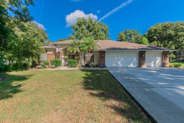 26143 Mountainview Boulevard, Brooksville, FL 34602 (MLS #2196914) :: The Hardy Team - RE/MAX Marketing Specialists