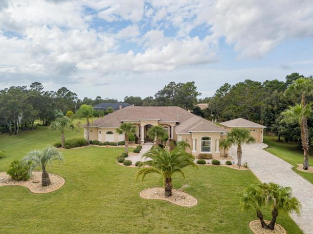 10117 Breezy Pines Court, Weeki Wachee, FL 34613 (MLS #2196964) :: The Hardy Team - RE/MAX Marketing Specialists