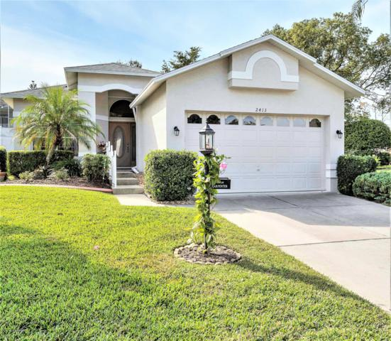 2413 Fairskies Drive, Spring Hill, FL 34606 (MLS #2197238) :: The Hardy Team - RE/MAX Marketing Specialists