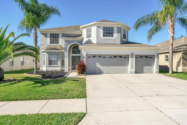 4093 Braemere Drive, Spring Hill, FL 34609 (MLS #2197390) :: The Hardy Team - RE/MAX Marketing Specialists