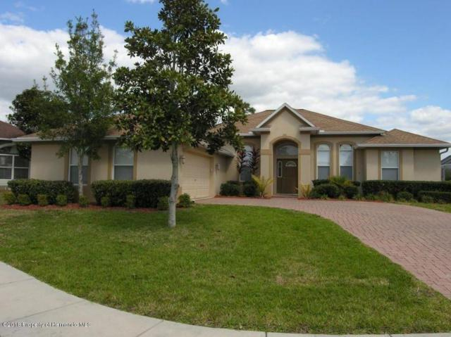 5635 Brackenwood Drive, Spring Hill, FL 34609 (MLS #2197475) :: The Hardy Team - RE/MAX Marketing Specialists