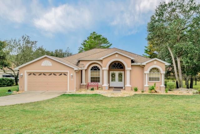11425 Warm Wind Way, Weeki Wachee, FL 34613 (MLS #2197505) :: The Hardy Team - RE/MAX Marketing Specialists