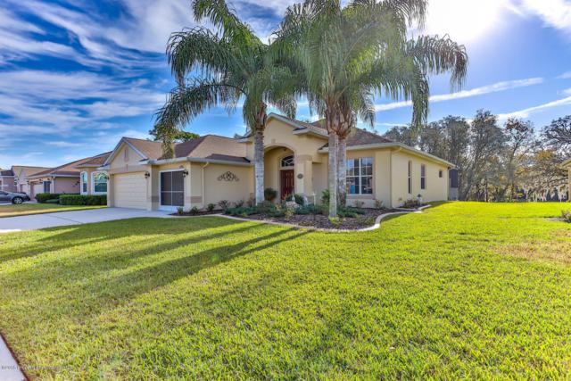 11166 Westerly Drive, Spring Hill, FL 34609 (MLS #2197673) :: The Hardy Team - RE/MAX Marketing Specialists
