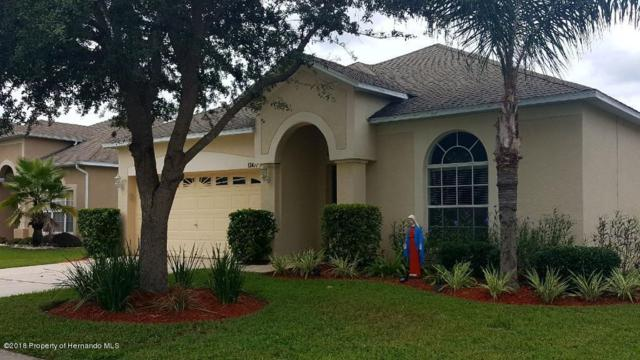 13477 Haverhill Drive, Spring Hill, FL 34609 (MLS #2197712) :: The Hardy Team - RE/MAX Marketing Specialists