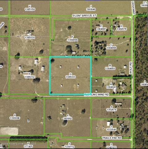 16438 Rustling Wind Road, Brooksville, FL 34604 (MLS #2197881) :: The Hardy Team - RE/MAX Marketing Specialists