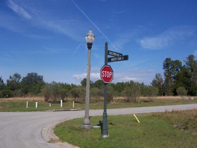 19454 Mossy Oak Court, Brooksville, FL 34601 (MLS #2197888) :: The Hardy Team - RE/MAX Marketing Specialists