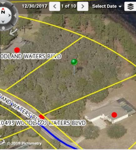 0 Woodland Waters Boulevard, Weeki Wachee, FL 34613 (MLS #2197935) :: The Hardy Team - RE/MAX Marketing Specialists
