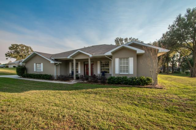 26158 Mountainview Boulevard, Brooksville, FL 34602 (MLS #2198030) :: The Hardy Team - RE/MAX Marketing Specialists