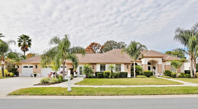 467 Castille Drive, Spring Hill, FL 34608 (MLS #2198125) :: The Hardy Team - RE/MAX Marketing Specialists