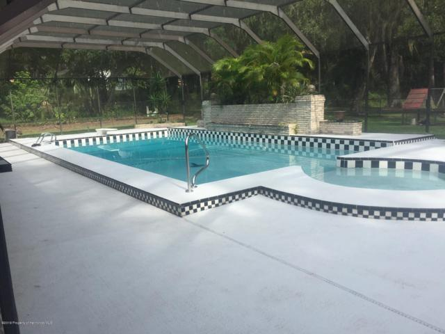 603 Brierfield Court, Brooksville, FL 34601 (MLS #2198305) :: The Hardy Team - RE/MAX Marketing Specialists