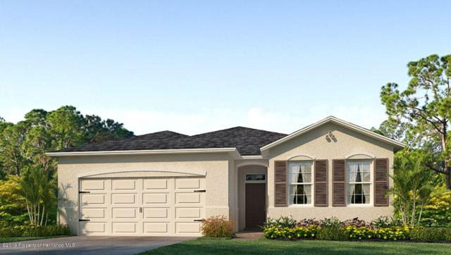 17601 Garsalaso Circle, Brooksville, FL 34604 (MLS #2198404) :: The Hardy Team - RE/MAX Marketing Specialists