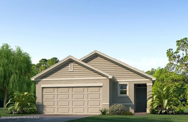 6694 Seaway Drive, Brooksville, FL 34604 (MLS #2198457) :: The Hardy Team - RE/MAX Marketing Specialists