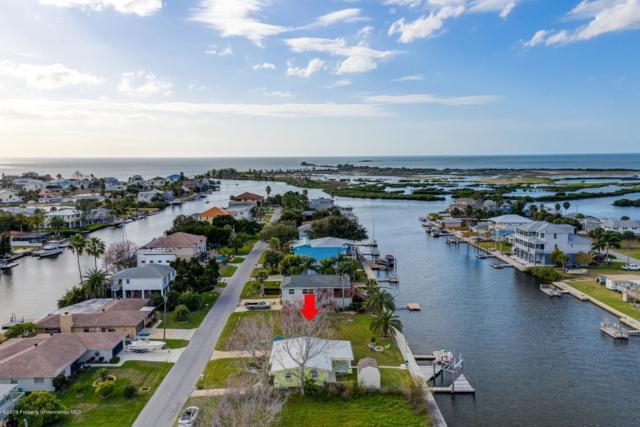3345 Minnow Creek Drive, Hernando Beach, FL 34607 (MLS #2198492) :: The Hardy Team - RE/MAX Marketing Specialists