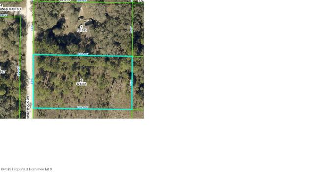 0 Chimney Rock Drive, Webster, FL 33597 (MLS #2198577) :: The Hardy Team - RE/MAX Marketing Specialists