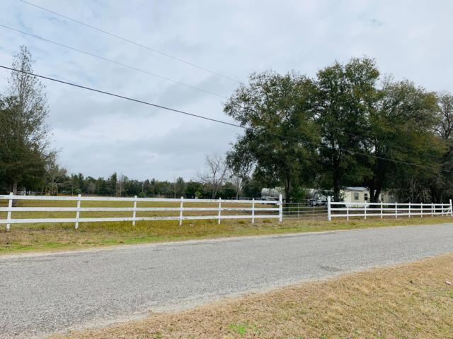 000 Christine Lane, Spring Hill, FL 34608 (MLS #2198624) :: The Hardy Team - RE/MAX Marketing Specialists