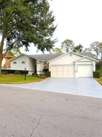 2336 Scenic Hill Drive, Spring Hill, FL 34606 (MLS #2198634) :: The Hardy Team - RE/MAX Marketing Specialists