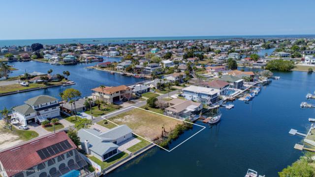 4160 Camelia Drive, Hernando Beach, FL 34607 (MLS #2198665) :: The Hardy Team - RE/MAX Marketing Specialists