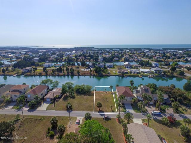 Lot 43 Sea Grape Drive, Hernando Beach, FL 34607 (MLS #2198670) :: The Hardy Team - RE/MAX Marketing Specialists