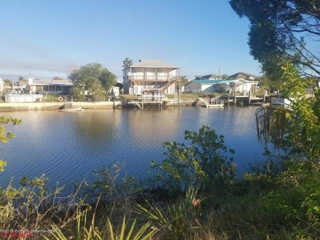 00 Bellaire Drive, Hernando Beach, FL 34607 (MLS #2198682) :: The Hardy Team - RE/MAX Marketing Specialists