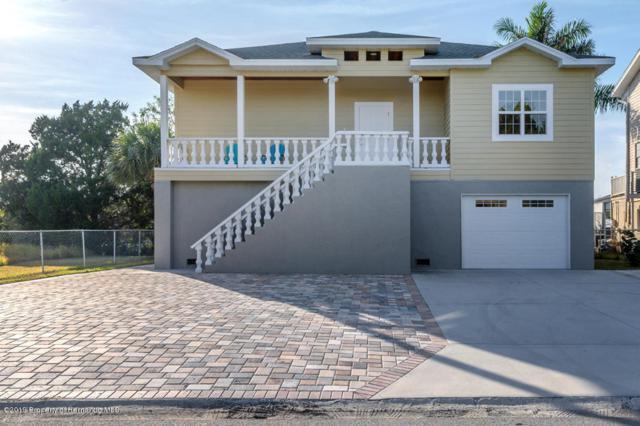 4481 Neptune Drive, Hernando Beach, FL 34607 (MLS #2198826) :: The Hardy Team - RE/MAX Marketing Specialists
