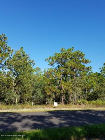 0 Margot Road, Brooksville, FL 34614 (MLS #2198970) :: The Hardy Team - RE/MAX Marketing Specialists