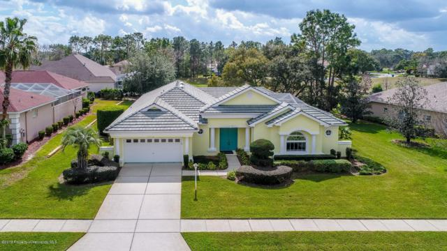 5418 Leather Saddle Lane, Brooksville, FL 34609 (MLS #2199072) :: The Hardy Team - RE/MAX Marketing Specialists