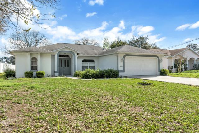 3024 Mandrell Avenue, Spring Hill, FL 34608 (MLS #2199096) :: The Hardy Team - RE/MAX Marketing Specialists
