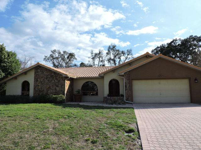 8252 Neda Street, Spring Hill, FL 34606 (MLS #2199100) :: The Hardy Team - RE/MAX Marketing Specialists