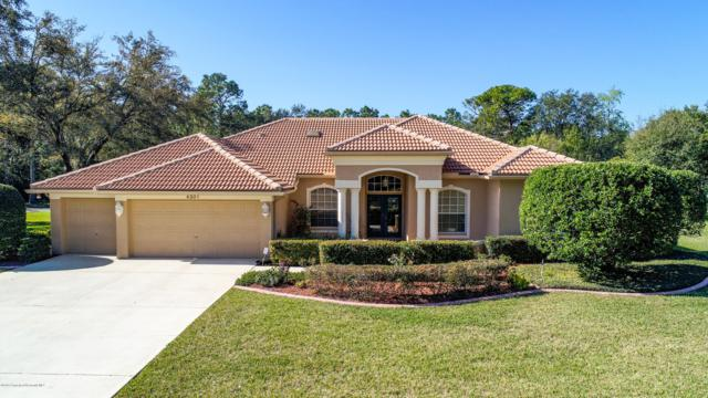 4201 Lordings Lane, Spring Hill, FL 34607 (MLS #2199166) :: The Hardy Team - RE/MAX Marketing Specialists