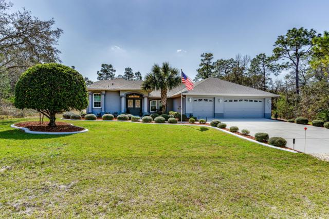 10290 Day Owl Avenue, Brooksville, FL 34613 (MLS #2199245) :: The Hardy Team - RE/MAX Marketing Specialists