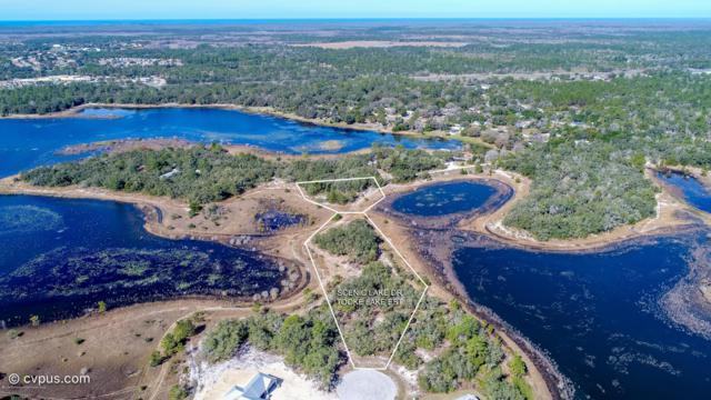 0 Scenic Lake Drive, Brooksville, FL 34613 (MLS #2199247) :: Premier Home Experts