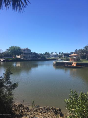 0 Pine Dale Court, Hernando Beach, FL 34607 (MLS #2199409) :: The Hardy Team - RE/MAX Marketing Specialists