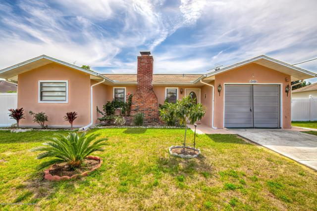 12400 Hanley Drive, Spring Hill, FL 34608 (MLS #2199511) :: The Hardy Team - RE/MAX Marketing Specialists