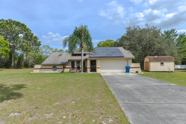 1262 Bolander Avenue, Spring Hill, FL 34609 (MLS #2199619) :: The Hardy Team - RE/MAX Marketing Specialists