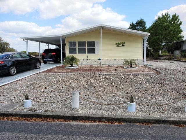 7468 Del Rio Avenue, Brooksville, FL 34613 (MLS #2199633) :: The Hardy Team - RE/MAX Marketing Specialists