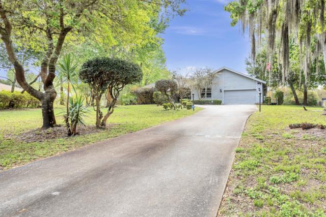 6035 Sandra Drive, Weeki Wachee, FL 34607 (MLS #2199742) :: The Hardy Team - RE/MAX Marketing Specialists