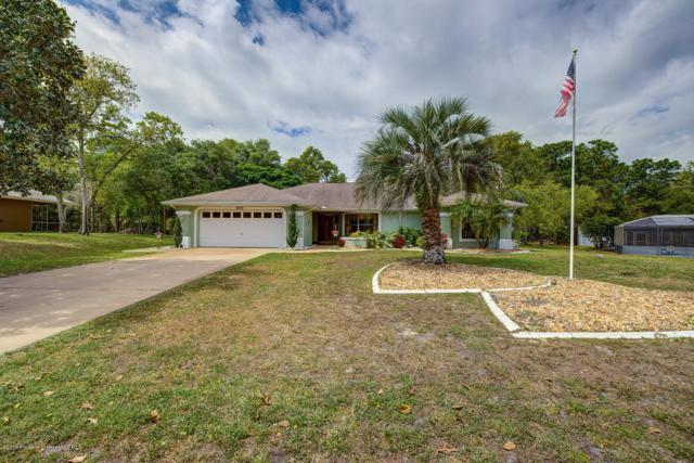1213 Finland Drive, Spring Hill, FL 34609 (MLS #2199776) :: The Hardy Team - RE/MAX Marketing Specialists