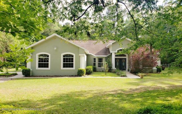 21152 Ted Road, Brooksville, FL 34601 (MLS #2199810) :: The Hardy Team - RE/MAX Marketing Specialists