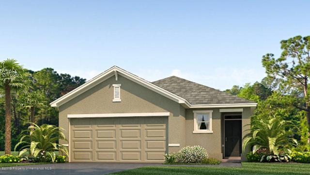 6678 Seaway Drive, Brooksville, FL 34604 (MLS #2199850) :: Team 54