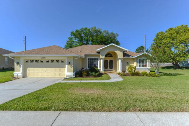 14041 Pullman Drive, Spring Hill, FL 34609 (MLS #2199915) :: The Hardy Team - RE/MAX Marketing Specialists