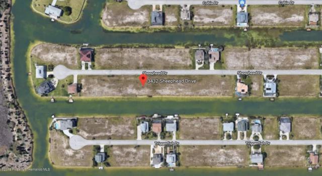 0 Sheephead Drive, Hernando Beach, FL 34607 (MLS #2200098) :: The Hardy Team - RE/MAX Marketing Specialists