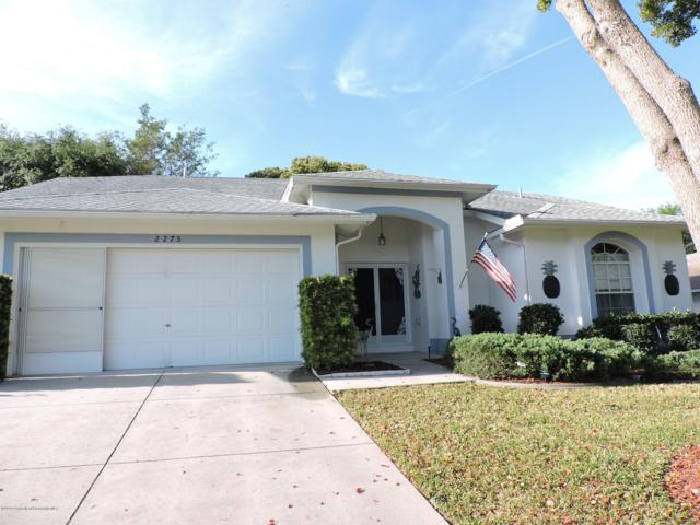 2275 Terrace View Lane, Spring Hill, FL 34606 (MLS #2200111) :: The Hardy Team - RE/MAX Marketing Specialists