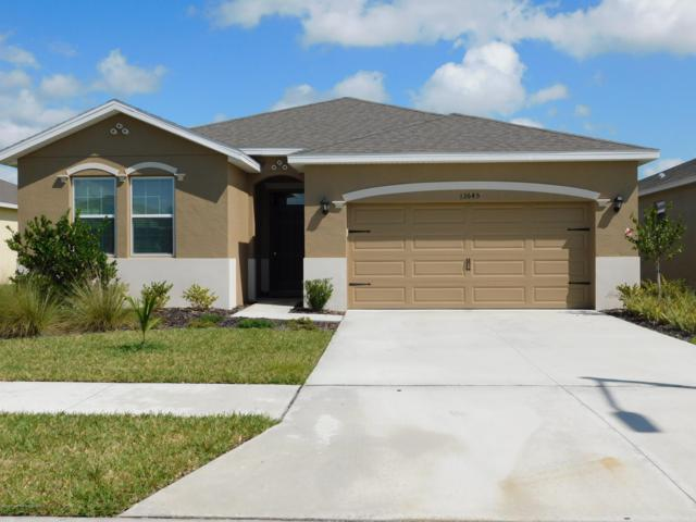 13645 Hunting Creek Place, Spring Hill, FL 34609 (MLS #2200134) :: The Hardy Team - RE/MAX Marketing Specialists