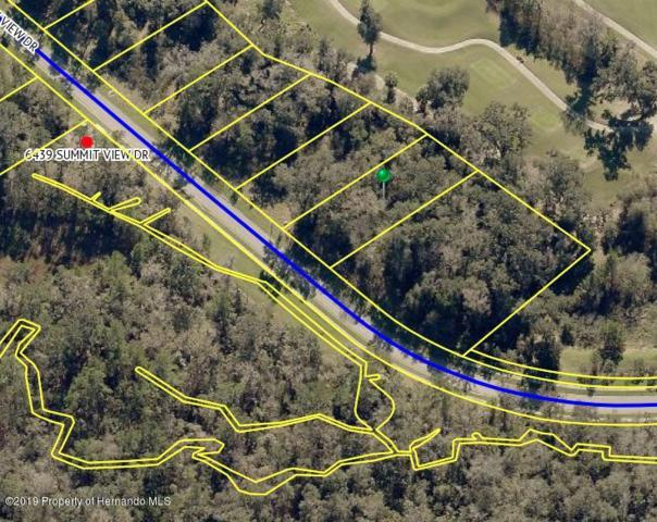 0 Summit View Drive, Brooksville, FL 34601 (MLS #2200188) :: The Hardy Team - RE/MAX Marketing Specialists