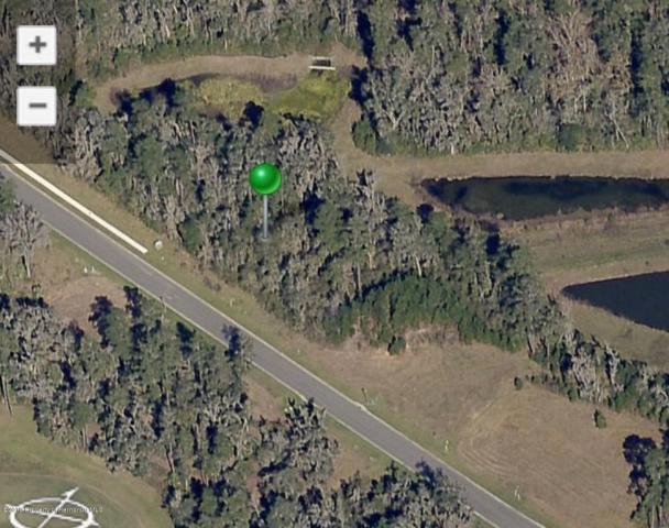 0 Summit View Drive, Brooksville, FL 34601 (MLS #2200189) :: The Hardy Team - RE/MAX Marketing Specialists