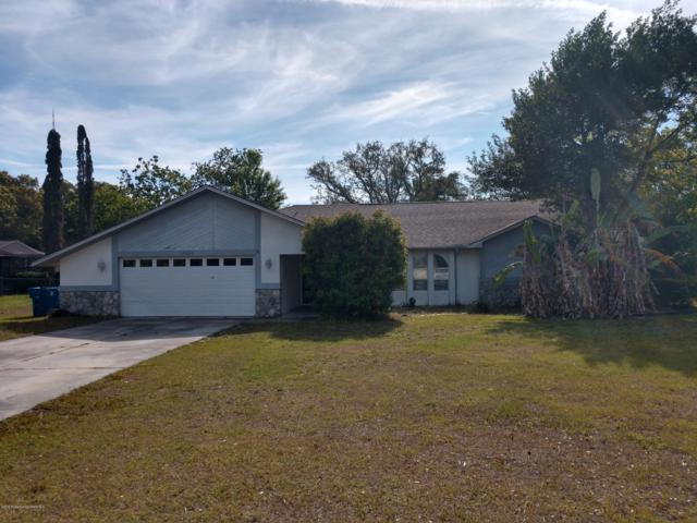 10608 Horizon Drive, Spring Hill, FL 34608 (MLS #2200199) :: The Hardy Team - RE/MAX Marketing Specialists